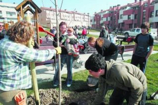 115 niños tienen desde ayer un árbol con su nombre en Noáin