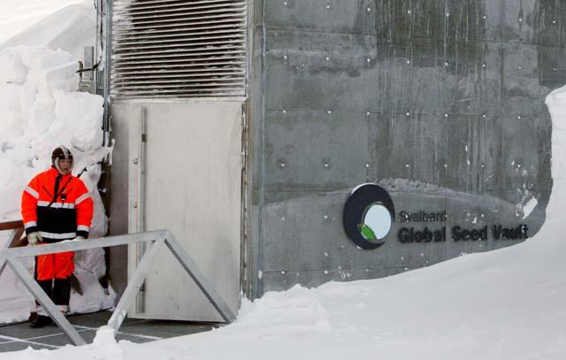 Inaugurada la Bóveda Global de Semillas en el Ártico con un depósito de 100 millones de semillas