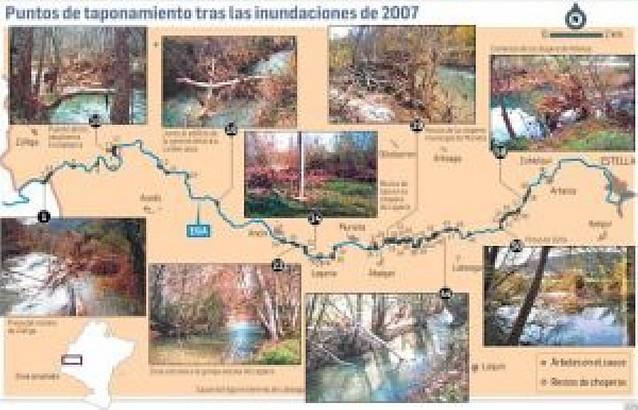 Los pescadores detectan 60 taponamientos en el curso alto del Ega por árboles caídos