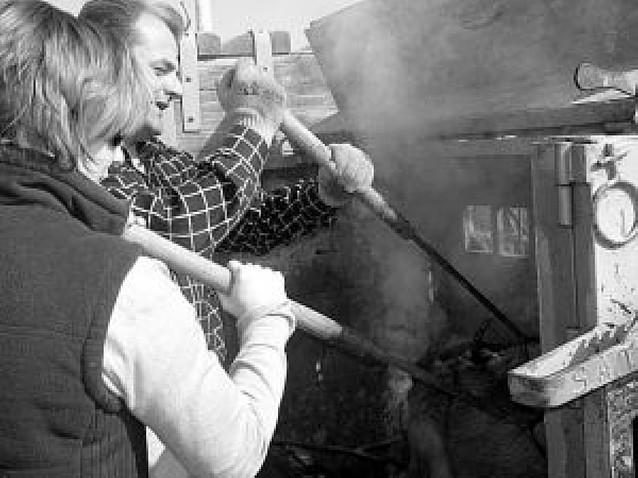 La ganadería Fraguas lidiará este año 3 novilladas picadas