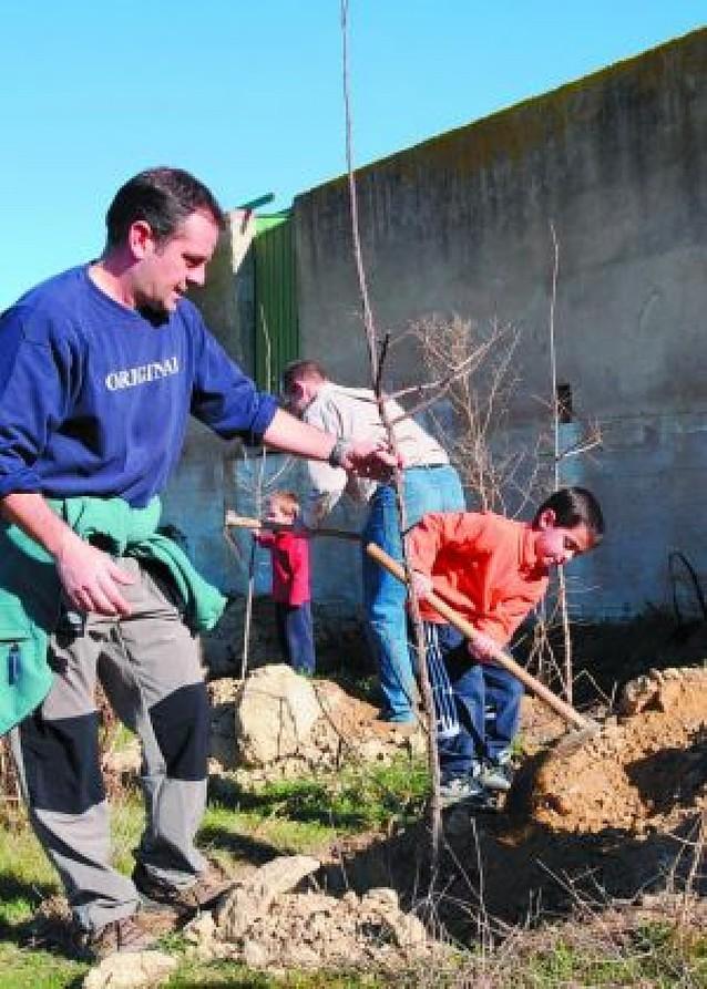 Tafalla plantó cerca de 300 árboles en el corral del Ereta