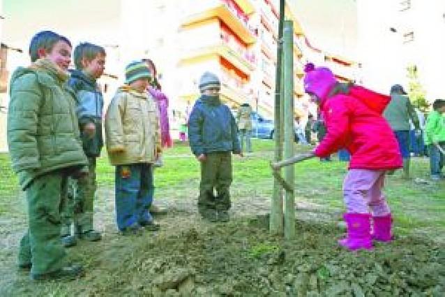 Un centenar de escolares de Estella desafiaron al frío el Día del árbol