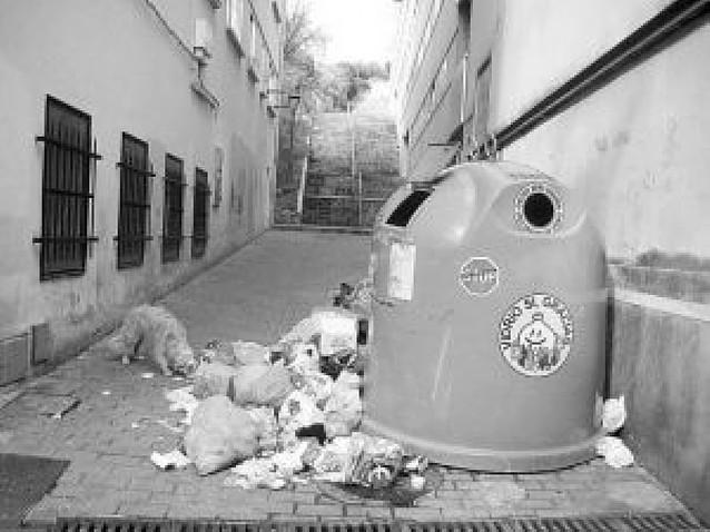 Malestar vecinal por la acumulación de bolsas de basura en la calle Cotarro