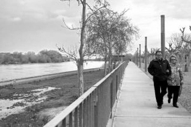 El nivel de las aguas del río Ebro desciende un metro en 24 horas
