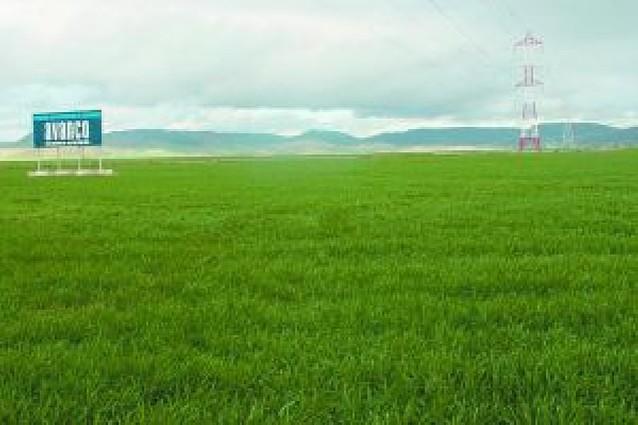 Los propietarios de los terrenos de Cordovilla, a favor del plan de viviendas del Gobierno