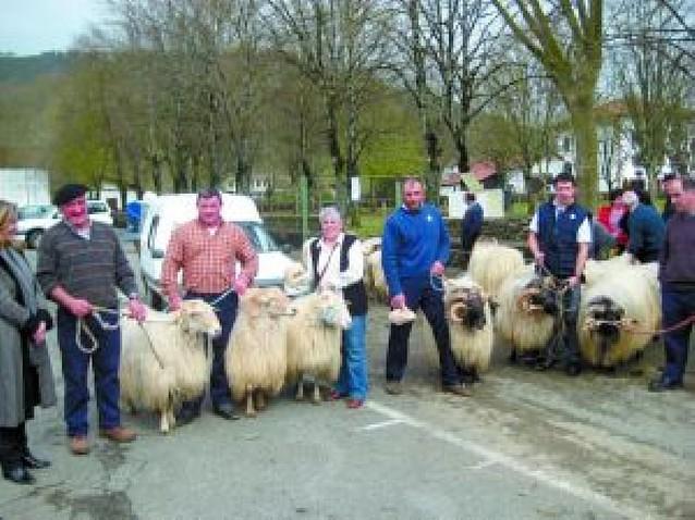 Día de sopa, artesanía y carneros