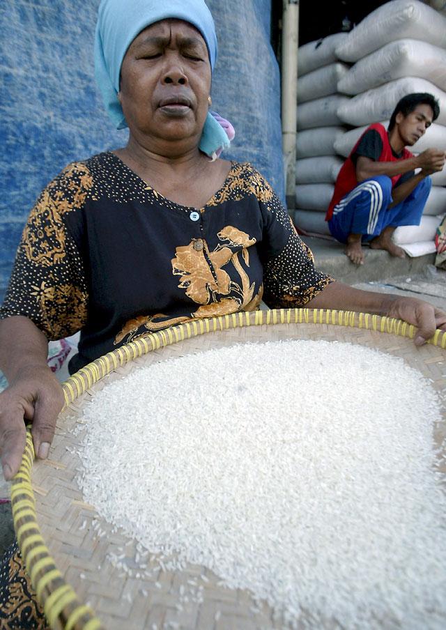 El precio del arroz seguirá incrementándose en los próximos años