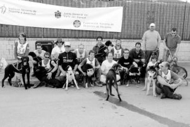 Olite exhibió perros de trineo