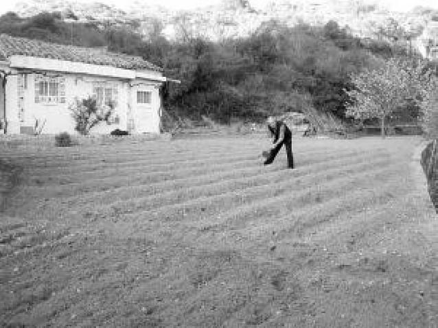 Diez propietarios de huertas de San Lorenzo no obtienen permiso para llevar el agua