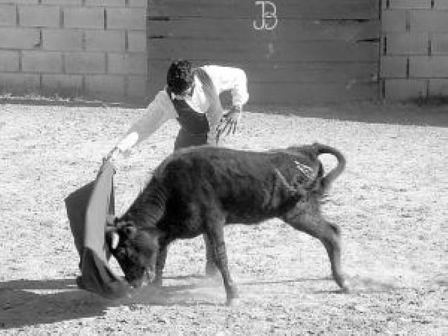 El ganadero lodosano Baigorri lidiará siete novilladas este año