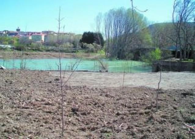 Lumbier habilita una zona recreativa en la ribera del Irati