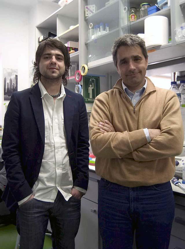 Científicos españoles estudian la adaptación animal a las bajas temperaturas