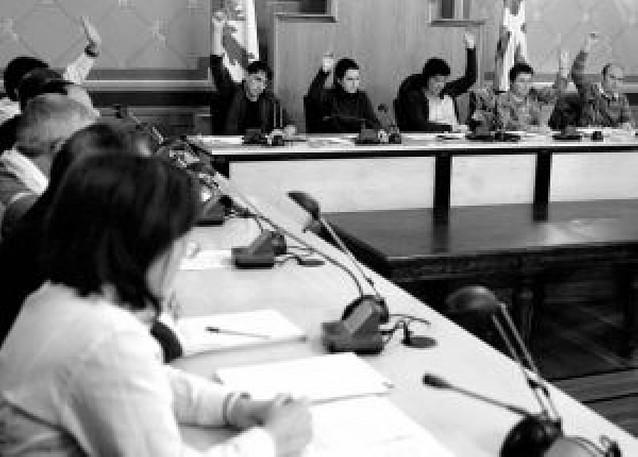 Aralar echa abajo la moción presentada contra ANV en Vergara