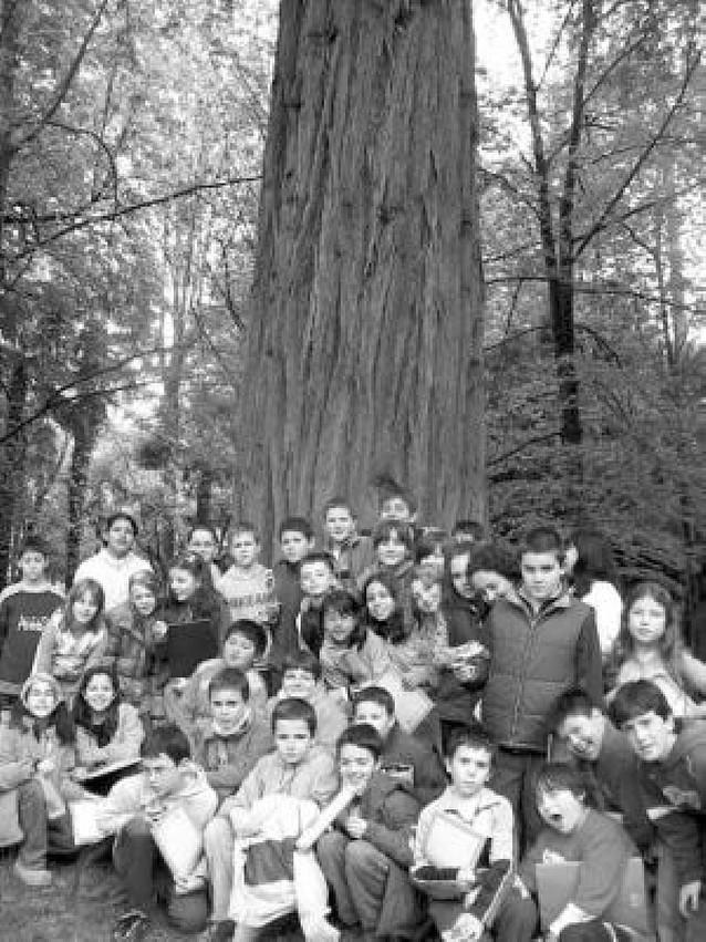 Los alumnos de Remontival toman parte en un festival en Elizondo