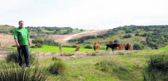 El Canal de Navarra, entre vacas bravas