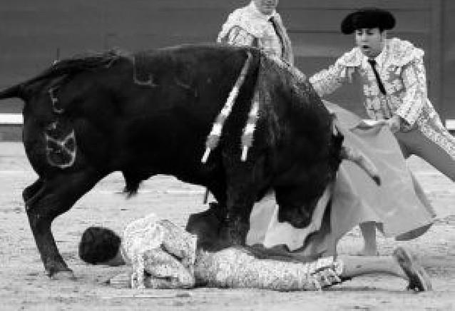 José Tomás se recupera de la cogida que sufrió en Jerez