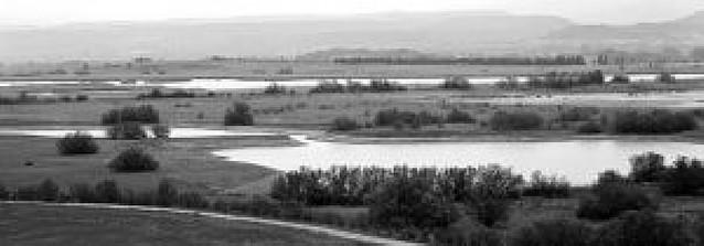 La laguna Las Cañas de Viana reforzará el dique para mejorar el hábitat de la fauna
