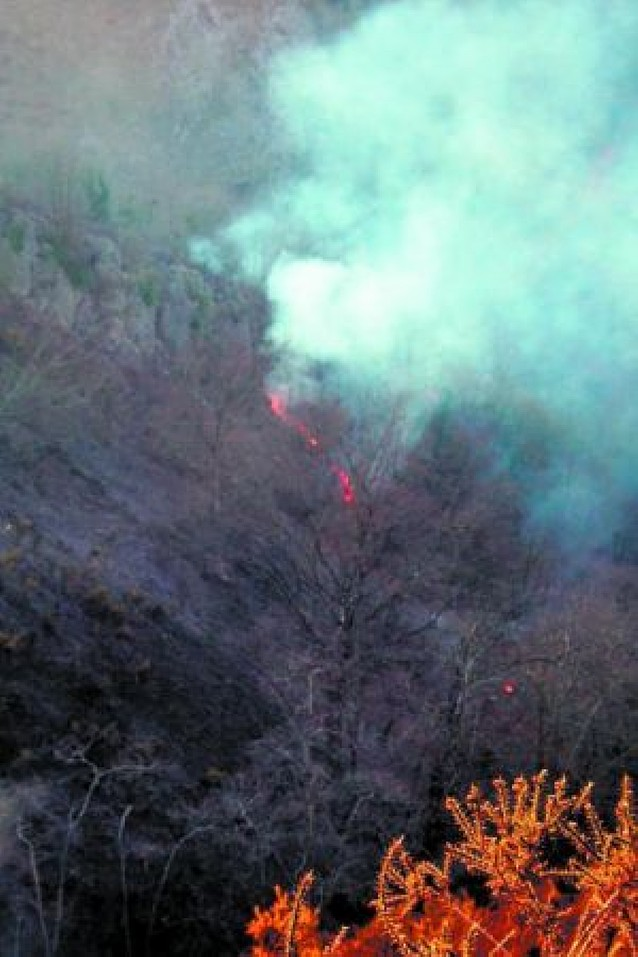 Los incendios quemaron durante el invierno 850 ha, el doble que en todo 2007