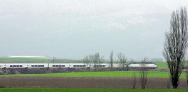 El tren gana 8.000 viajeros en tres meses