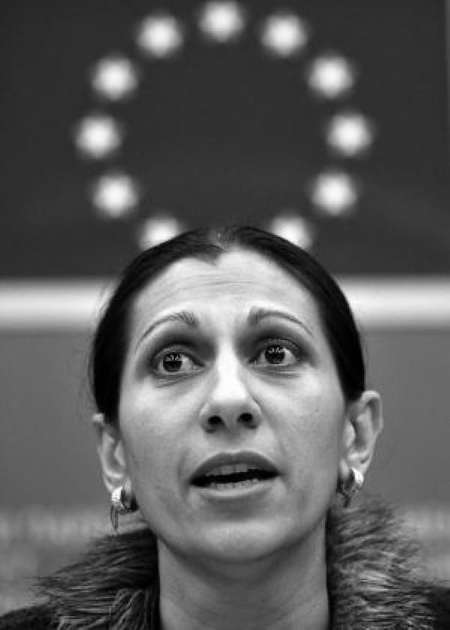 El Parlamento Europeo condena los ataques a campamentos de gitanos