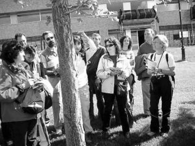 Treinta amigos de los árboles