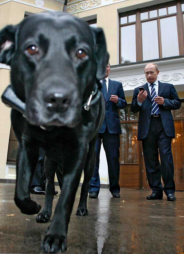 Putin controlará los movimientos de su perra vía satélite