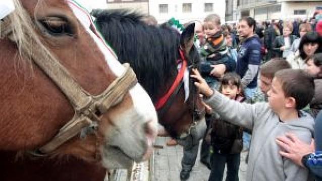 """""""Salvaje"""", mejor caballo """"burguete"""" en Alsasua"""
