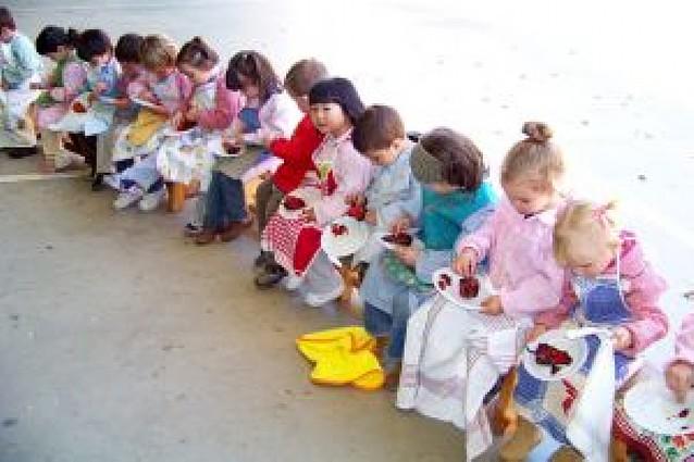 El piquillo, protagonista en las aulas