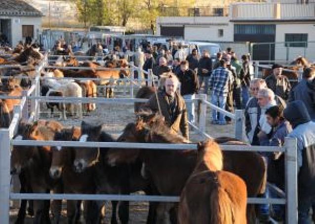 La feria caballar de Tafalla se saldó con la venta de 271 animales