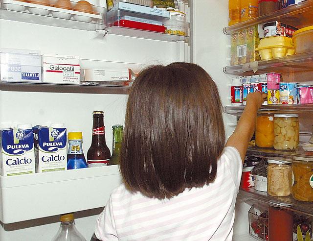 Cambiar el frigorífico de clase E por uno A+ ahorra más de 870 euros