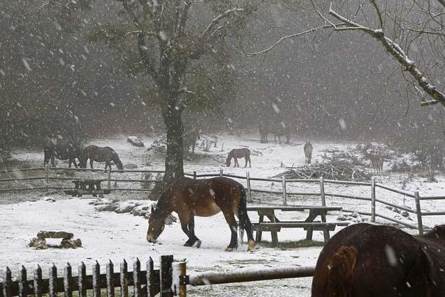 Sube la cota de nieve y bajan ligeramente las temperaturas mínimas