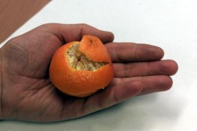 Piel de naranja seca para combatir las polillas