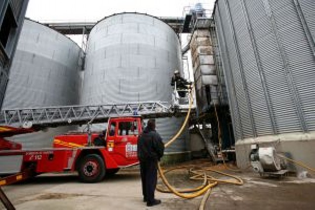 Arden 25.000 kg de arroz en Arguedas