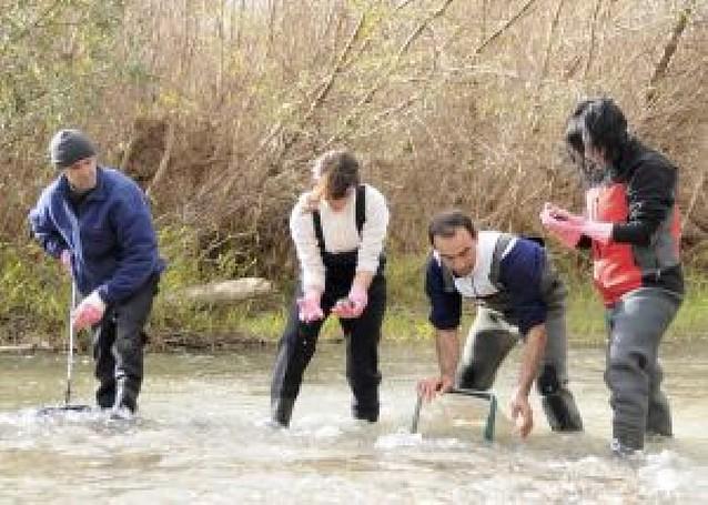 Voluntarios retiran 284 kilos de basura de las orillas del río Cidacos en Olite