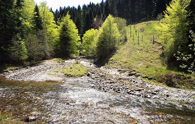 """Un informe sobre Medio Ambiente refleja una """"realidad favorable"""" en Navarra"""