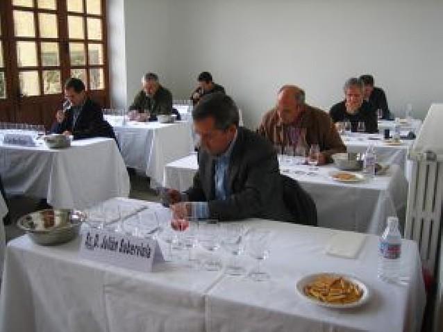 El concurso de vino ecológico de Estella reúne a 27 bodegas