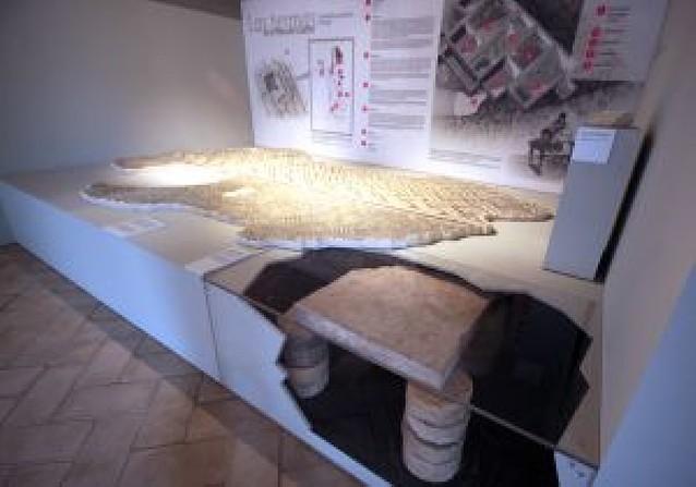 Pamplona muestra sus hallazgos arqueológicos en una exposición
