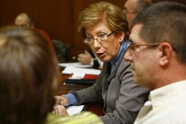 María José Fernández (PSN) dimite como edil de Estella