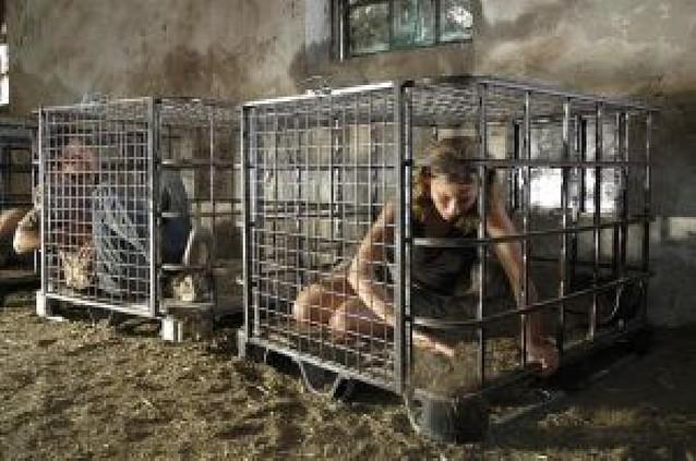 """La miniserie """"El castigo"""" retrata un Guantánamo juvenil"""