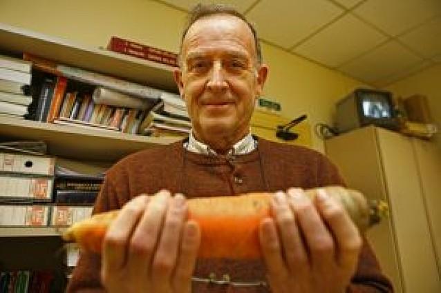 Una zanahoria de 800 gramos