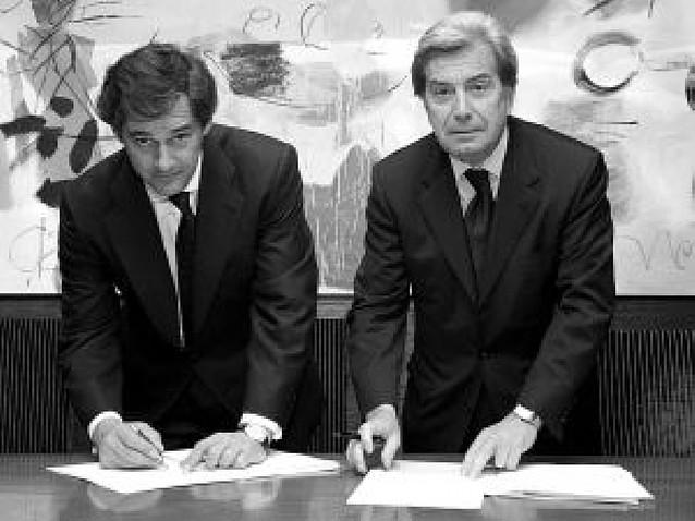 Enel y Acciona dejan para 2009 la creación de la nueva filial de renovables