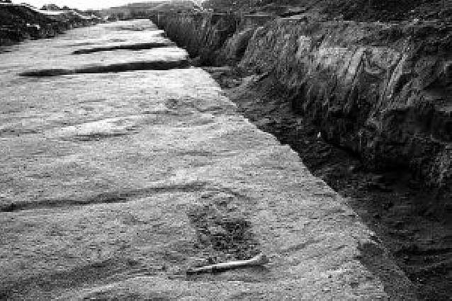 Hallan en Ablitas una necrópolis con unas 40 sepulturas que podría datar de la época visigoda