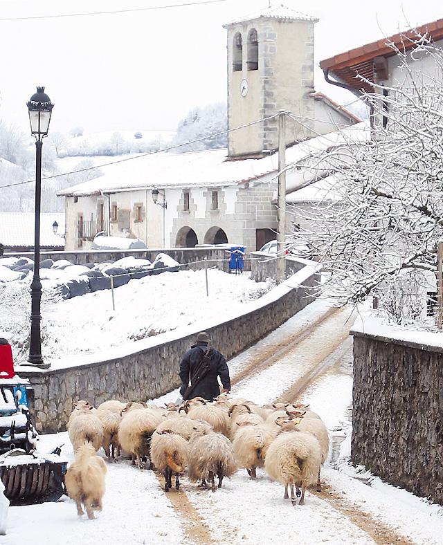 La nieve cayó ayer por toda Navarra pero sólo cuajó a partir de 550 metros