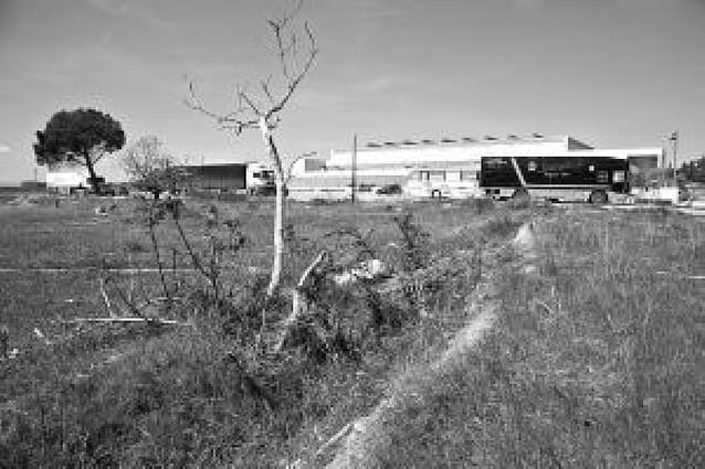 Los colegios de Tudela discrepan sobre la necesidad de crear un nuevo centro en la ciudad