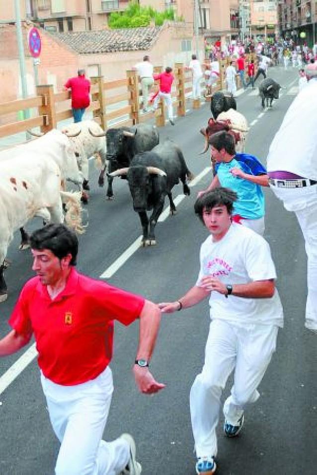 Chopera propone unas fechas para la feria de Tudela con sólo dos encierros de toros