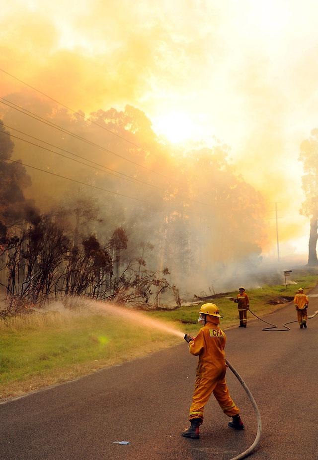 Al menos 30 muertos por la ola de calor en el sur de Australia