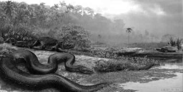La mayor serpiente de la historia