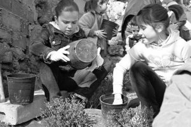 Pequeños jardineros en el centro de Estella