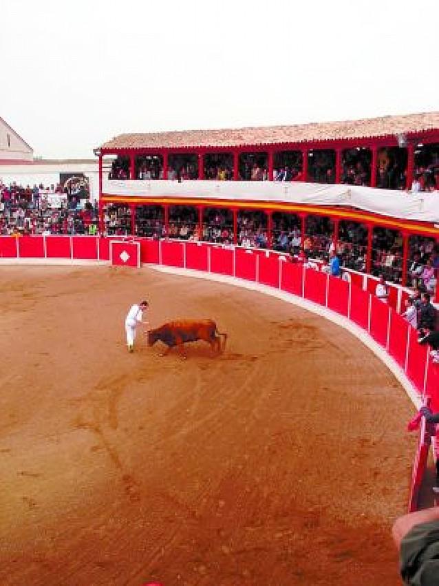 El concurso de ganaderías y anillas reúne a 2.000 personas