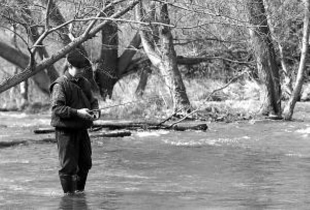 El 78% de los ríos navarros cumple la directiva europea de calidad de agua en primavera